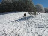 На санках с горы
